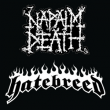 Concert PASS NAPALM DEATH / HATEBREED