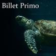 """EXCLU WEB - BILLET """"PRIMO 2017"""""""