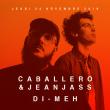 Concert CABALLERO & JEANJASS, DI-MEH