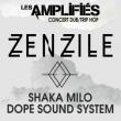 Concert LES AMPLIFIES MARS 2017