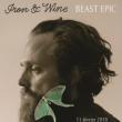 Concert Iron & Wine