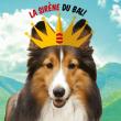 """Concert 6 EME ANNIVERSAIRE : BAL POPUL """"AIR"""" DE RIEN  à LA ROCHELLE @ LA SIRENE  - Billets & Places"""