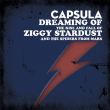 Concert CAPSULA - Dreaming of Ziggy Stardust + VAILLANT