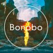 Concert Bonobo - Live + Nick Hakim